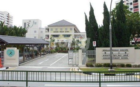 中国学生留学新加坡政府中小学