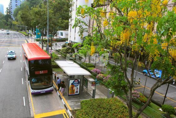 新加坡留学父母最担心的三大问题