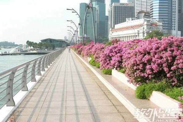 新加坡幼儿申请留学