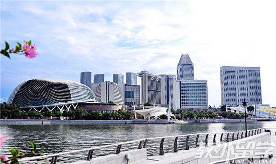 新加坡商科专业好吗
